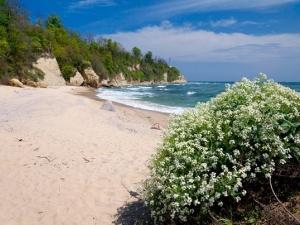 Пляж. Бяла.